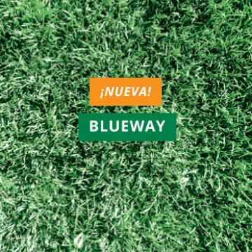 Blueway(nueva)