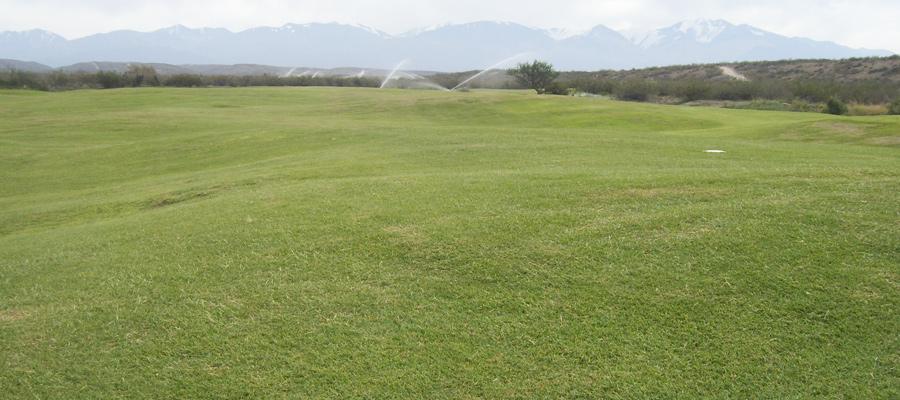 Golf Tupungato Mendoza Cesped Nuevos Verdes